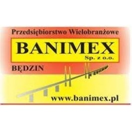logo-Banimex